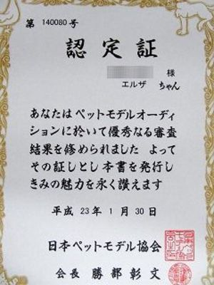 2011130_013